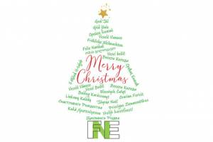 FNE wishes you a Merry Christmas and a Happy Safe and Successful New Year! See you again on 11 January 2021