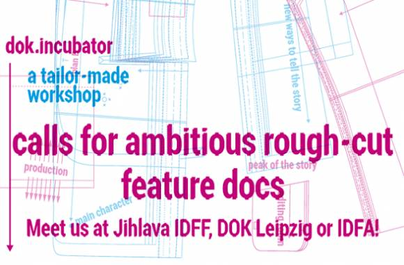 Apply for dok.incubator: deadline January 31st