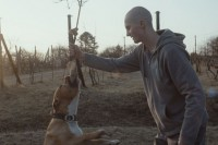 My dog killer, Director: Mira Fornay