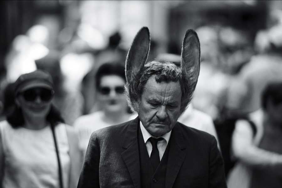 The Man With Hare Ears by Martin Šulík, photo: WFF