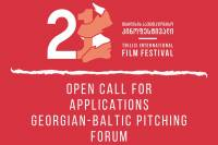 Georgian-Baltic Pitch Panel Opens Call For Project Application