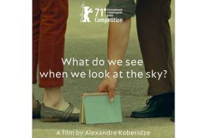 What Do We See When We Look at the Sky? by Alexander Koberidze